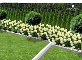 Aurea Garden - Projekty ogrodów - Drezdenko