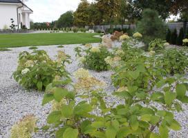 Aranżacja ogrodu Gorzów Wlkp