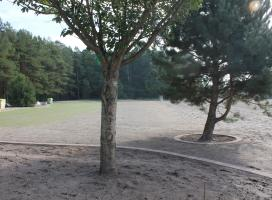 Obrzeże rabatowe z kostki i trawnik w czasie kiełkowania